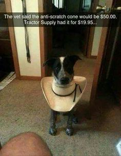 VERY CLEVER COWBOY
