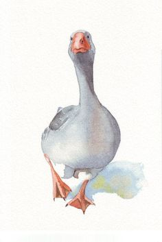 Goose Painting nature bird art print of by Splodgepodge on Etsy - Picmia Watercolor Sketch, Watercolor Bird, Watercolor Animals, Watercolor Illustration, Watercolour Painting, Painting & Drawing, Watercolours, Guache, Bird Drawings