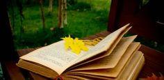 Un otoño de libros