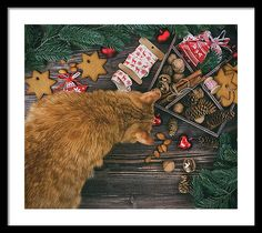 Oksana Ariskina Framed Print featuring the photograph Christmas Decoration With Ginger Cat Hanging Over The Wooden Background by Oksana Ariskina  #OksanaAriskina #OksanaAriskinaFineArtPhotography #Artworks #FineArtPhotography #HomeDecor #FineArtPrints #Cat #PrintsForSale #Portrait  #Christmas #Xmas #GingerCat #Decor #Wood #Framed