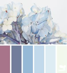 { hydrangea hues } color palette by designseeds Colour Pallette, Colour Schemes, Color Combos, Design Seeds, Color Balance, Deco Design, Blog Design, Color Swatches, Color Theory