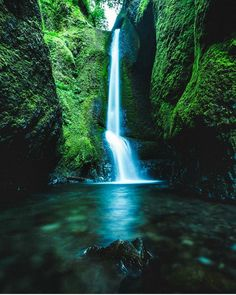 What's better than a waterfall in the rainforest??? One of our featured photographers @alternativesight captured this one perfectly!  #woodscapeprints  #forest #waterfall #incredible_masterpiece #water #woodprint #wood #capture #focus #aperture #exposure #shutter #sonyalpha #nikon #canon #camera #dslr #mirrorless #planetearth #earth #beautiful #sunday #colorful #photooftheday #featuredartist #picoftheday #artofvisuals #killeverygram #moodygrams #rainforest