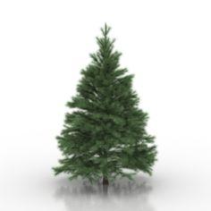 Download 3D Conifers tree