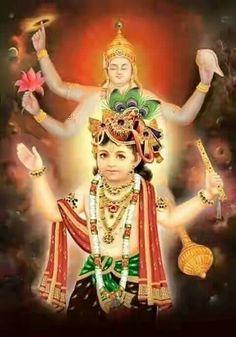 Vishnu Krishn Avtar