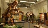 Giant Ground Sloth, Saber Tooth Cat, Mastodon