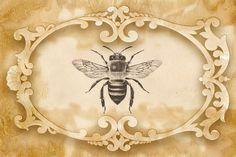 Bountiful Heirlooms: Bees, Butterflies, and Dragonflies: Free Journal Printables Éphémères Vintage, Vintage Labels, Vintage Ephemera, Kit Design, Paper Art, Paper Crafts, Bee Crafts, Bee Art, Bee Theme