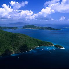 Monkey Point at Guana Island in the BVI had some of the best snorkeling I've ever experienced.