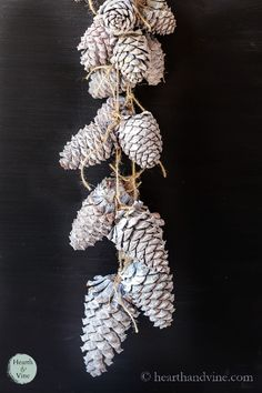 Use paint to create beautiful pinecones that look like they have been bleached with much less time, toxic smell and mess. Diy Christmas Room, Homemade Christmas Decorations, Christmas Ideas, Pinecone Garland, White Chalk Paint, Pine Cone Crafts, Homemade Beauty Products, Nature Crafts, Diy Wreath