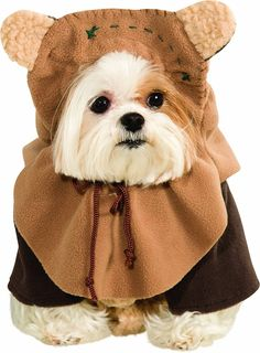 Transform your dog into a cuddly creature from a galaxy far, far away with our Ewok Dog Costume. This Star Wars dog costume includes a jacket and Ewok dog headpiece. Star Wars Halloween, Ewok Halloween, Chien Halloween, Pet Halloween Costumes, Cat Costumes, Costume Ideas, Spirit Halloween, Costume Patterns, Halloween Halloween
