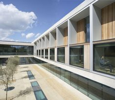 Khan like seating niches inside the Sainsbury Laboratory by Stanton Williams. Photo by Hufton + Crow.