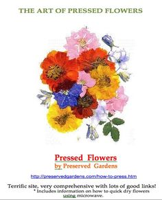 The most comprehensive site about pressing flowers, with numerous links to lots of other interesting crafts.