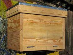 Layens Hive | Free Plans | Natural Beekeeping