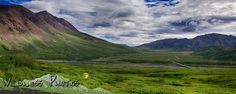Denali National Park Alaska - Near Highway Pass