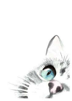 Un chats Focus Original aquarelle peinture impression dArt