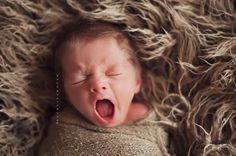 Rawrrr <3  (Newborn Photography Posing Inspiration Rachel Vanoven Oh So Posh Photography Rise & Shine Workshops   Leighton Heritage Newborn Faux Fur Prop)