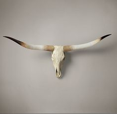 Texas Longhorn Steer Skull Natural - for Edie lord knows I'd never hang this in my home.