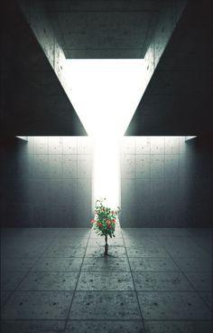 Contemporary Art Museum Interior Tadao Ando Ideas For 2019 Shadow Architecture, Concrete Architecture, Museum Architecture, Space Architecture, Tadao Ando, Light Study, Shadow Art, Luz Natural, Natural Light