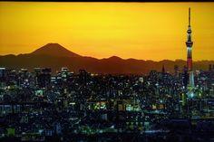 World Cities, Seattle Skyline, City, Travel, Viajes, Cities, Destinations, Traveling, Trips