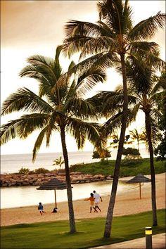 Disney Aulani Hawaii Landscape Sunset