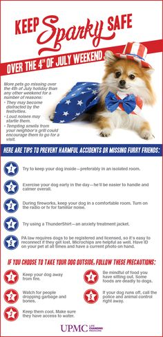 Keep your dog safe quotes quote snoopy pets july 4th fourth of july july fourth independence day happy 4th of july safety tips