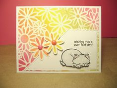 Time Out for Stamps:  Newton's Antics Cat Card for Newton's Nook Designs Inky Paws Challenge - citrus colors