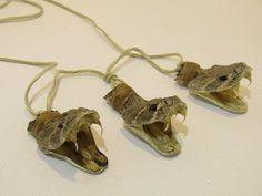 Mountain man necklace....  v675.... 3 Rattlesnake head necklace,.... replica primitive...