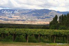 Disfrutar un buen vino, mientras se aprecia el bello paisaje, es un placer que lo tenés que vivir, Tucumán tiene eso y mucho más para vos! http://www.tucumanturismo.gob.ar #SentíTucumán!