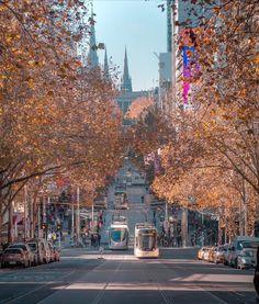Melbourne trams running along Bourke Street Melbourne Tram, Places In Melbourne, Melbourne Street, Melbourne Australia, Melbourne Victoria, Victoria Australia, Art Berlin, Travel Humor, Australia Living