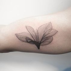 x-ray flower  #flowertattoo #tattoo #hongdam #타투 #홍담