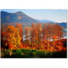 Trademark Fine Art Swing Canvas Art by Philippe Sainte-Laudy, Size: 12 x 19, Multicolor