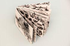 "Mein @Behance-Projekt: ""Naturstrukturen"" https://www.behance.net/gallery/61946319/Naturstrukturen"