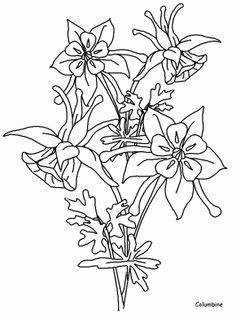columbine flower cartoon - Google Search