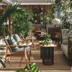 Teak Outdoor Garden Furniture is made from the teak tree discovered in the tropical area of Javanese. Most companies that build teak outdoor garden furniture. Twig Furniture, Outdoor Garden Furniture, Outdoor Decor, Vintage Furniture, Madrid, Cool Deck, Tropical, Contract Furniture, Patio Umbrellas
