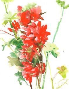 Hey, I found this really awesome Etsy listing at https://www.etsy.com/listing/221268234/geranium-red-flower-original-watercolor