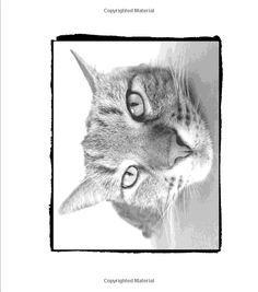 Amazon Gray To Gorgeous Cats Vol 1 A Grayscale