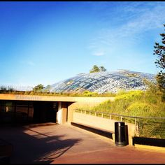 """Finish or start your Copenhagen Elephant Hunt with admiring the live specimens in Zoo. Elefanthuset """"The Elephant House"""" is one of the masterpieces in ..."""