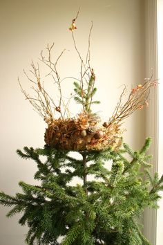 §§§ : gilded forest crown tree topper