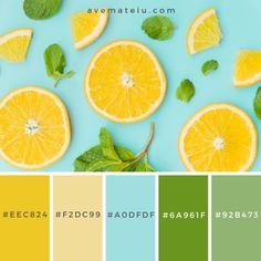 Sliced orange and mint leaves pattern Color Palette Geschnittene Orange und Minze Muster. Color Schemes Colour Palettes, Green Colour Palette, Green Colors, Color Combos, Orange Palette, Best Colour Combinations, Yellow Color Schemes, Combination Colors, Summer Color Palettes