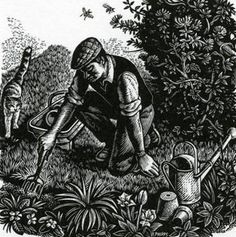 """The Jobbing Gardener"" by Howard Phipps (wood engraving) Woodcut Art, Scratchboard Art, Wood Engraving, Woodblock Print, Printmaking, Art Prints, Block Prints, Illustration Art, Creations"