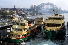 Sydney Ferries ~ Circular Quay, Sydney, New South Wales Australia Living, Sydney Australia, Australia Travel, Australia Pics, Western Australia, Sydney Trip, Places To Travel, Places To See, New Zealand