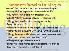 Watch This Video Exalted Remedies for Sinusitis and Allergies Ideas. Graceful Remedies for Sinusitis and Allergies Ideas. Homeopathy For Allergies, Natural Remedies For Allergies, Allergy Remedies, Natural Cold Remedies, Cold And Cough Remedies, Flu Remedies, Holistic Remedies, Homeopathic Remedies, Health Remedies