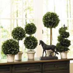 Very nice traditional topiaries.  The equine statue finishes it off.