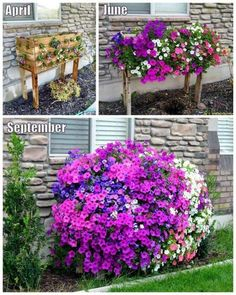 You will love this gorgeous Cascading Pallet Planter Box DIY and it's easy to make and looks great. Check out the video tutorial too.