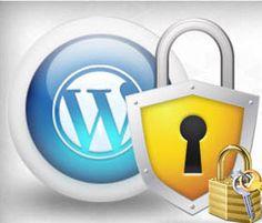 Safety and Security of a WordPress Blog an Infographic - /@Berta Malonda Art Visual Design V.O.F. - #wordpress