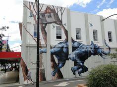 O trabalho de Magee estrelou recentemente em um festival de grafite em Toowoomba, Queensland.