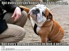 Dogs just know . . .