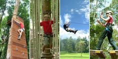At Ronstan Industrial we manufacture high quality, industrial strength rope and pulley systems which are used for tree top adventures. Adventure Company, Tree Tops, In The Tree, Pulley, Ladder Decor, Strength, Industrial, Blog, Industrial Music