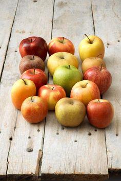 Les dernières pommes sont à récolter en automne...