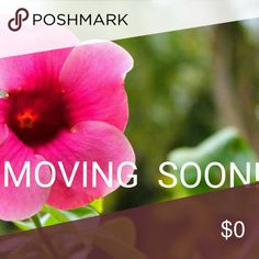 !!Moving From Hawaii to Las Vegas!! Hey Poshers! This is a notification that  there will be no sales/shipments  from SEPTEMBER16 through OCTOBER 31, 2016. My husband is Military and we are MOVING from HAWAII to LAS VEGAS and the items in my posh closet will be packed by the movers and NOT ACCESIBLE for 6 WEEKS! Thank you so much in advance for you patience and understanding!! Other