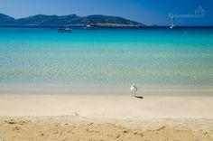 Ammos beach Koufonisia island Greece